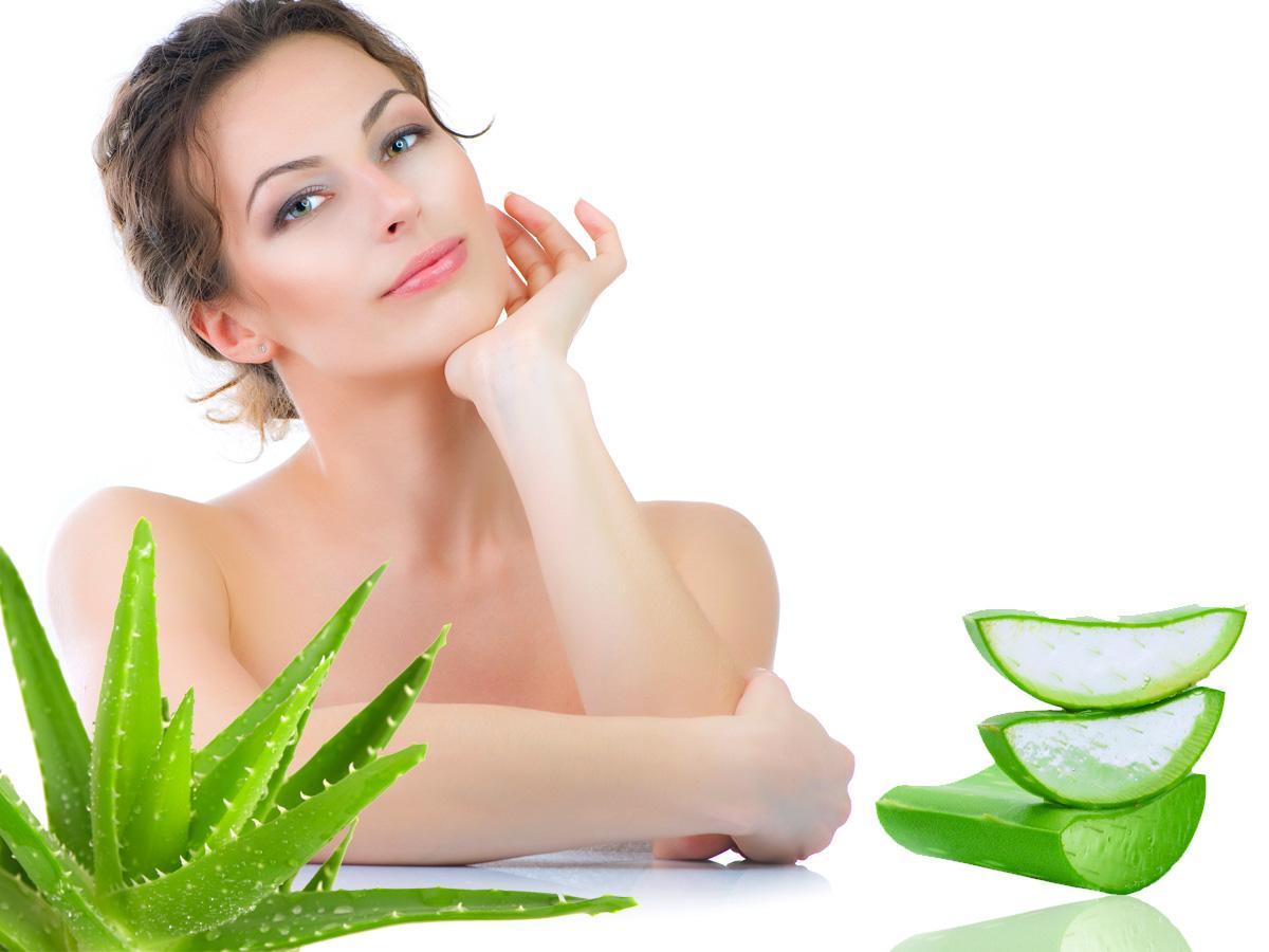 Aloe vera: tu aliado para una piel perfecta